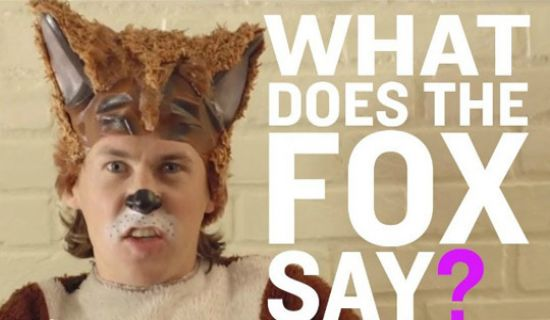 Multi Marketing: What Does The Fox Say? | MultiView